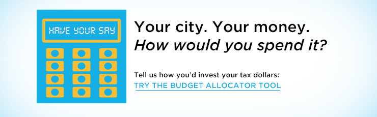Have Your Say: Budget Allocator Tool
