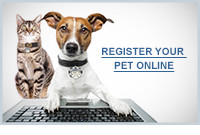 Register your pet online