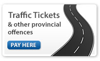 button: pay your Provincial fine